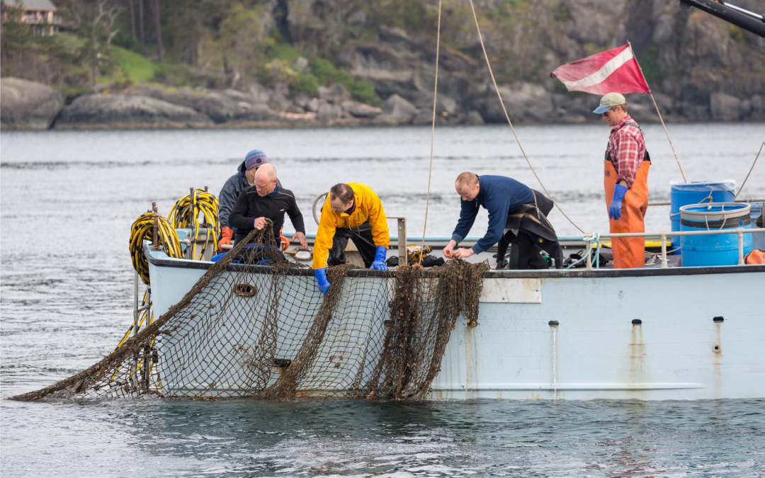 New Document Outlines Methods to Locate Lost Fishing Gear in Marine Waters